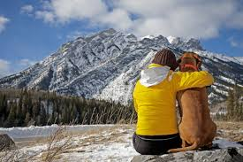 hiking with your dog in winter